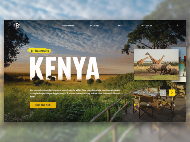 Travel Website UI – Kenya